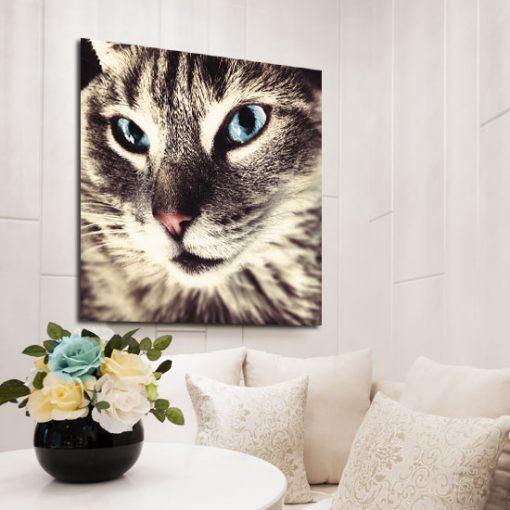 obraz kwadratowy kot