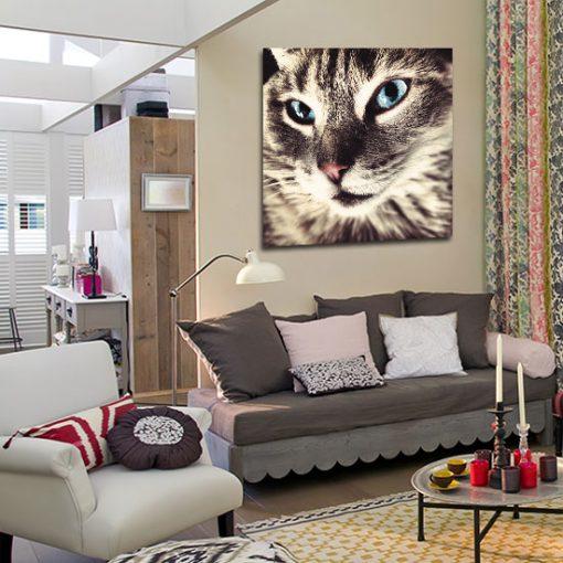 dekoracje ścian z kotami