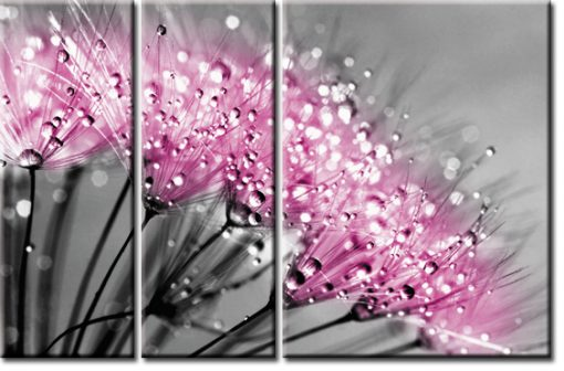 różowe dmuchawce tryptyk
