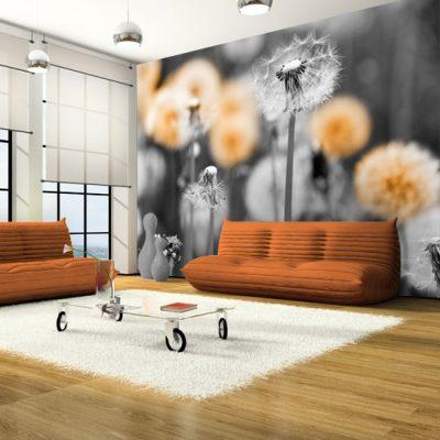 pomarańczowe dmuchawce tapeta