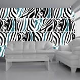 tapety z zebrą