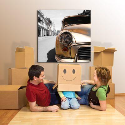 obrazy z autami
