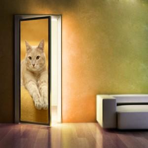 Jak odnowić stare drzwi - okleina na drzwi