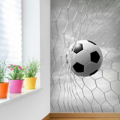fototapeta z piłką