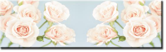 laminat z różami