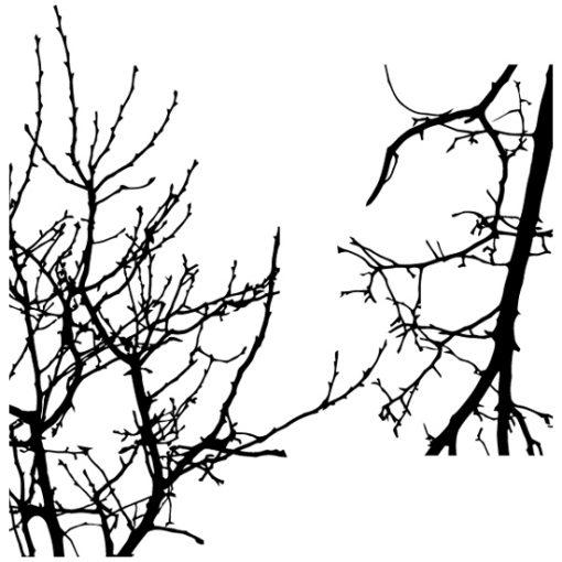 naklejka w kształcie drzewa
