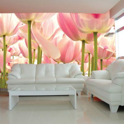 tulipany na dekoracji