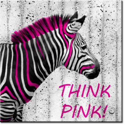 tapety z zebra