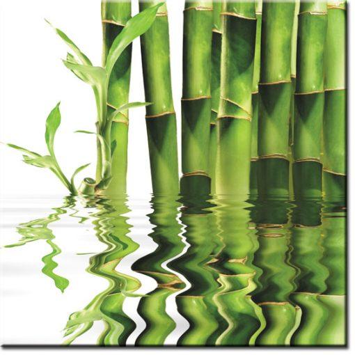 tapety z bambusami
