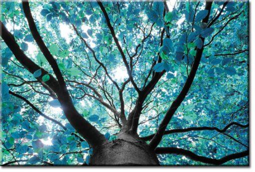 fototapety z drzewem