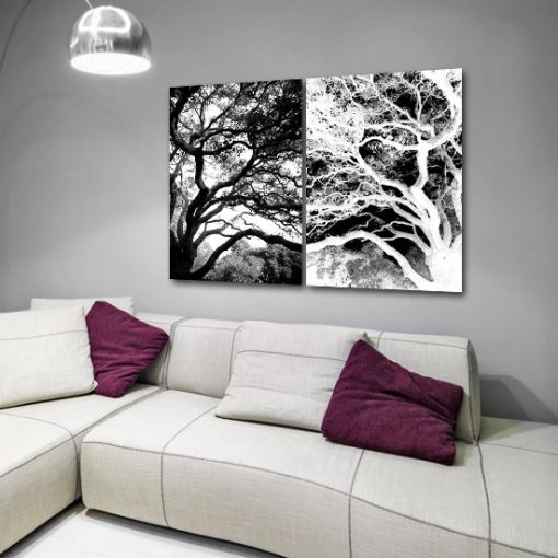 drzewa na obrazie