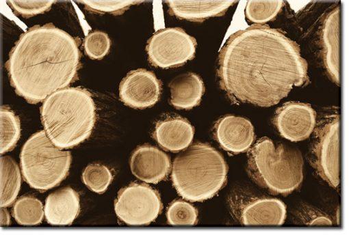 obrazy z drewnianymi kłodami