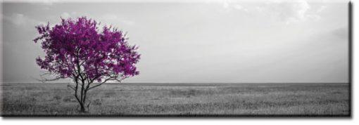 obrazy z drzewem