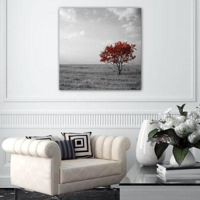 obrazy z krajobrazem