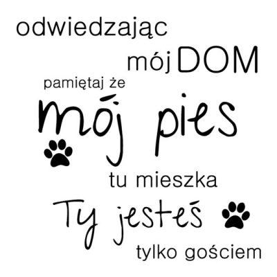 nalepka z typografią