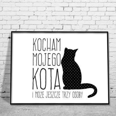 obrazy o kotach