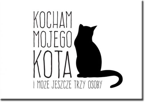 plakaty o kotach