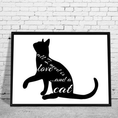 obrazy z o kotach