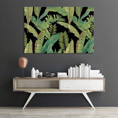 onbrazy z tropikami