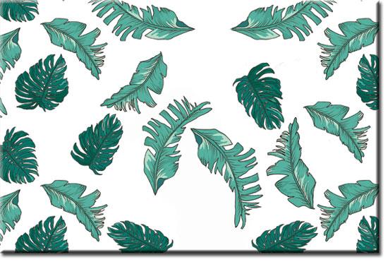 obrazy tropiki
