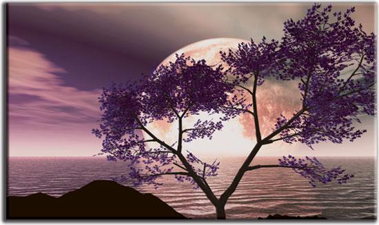 dekoracja z motywem fioletowego