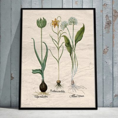 ozdoby botaniczne