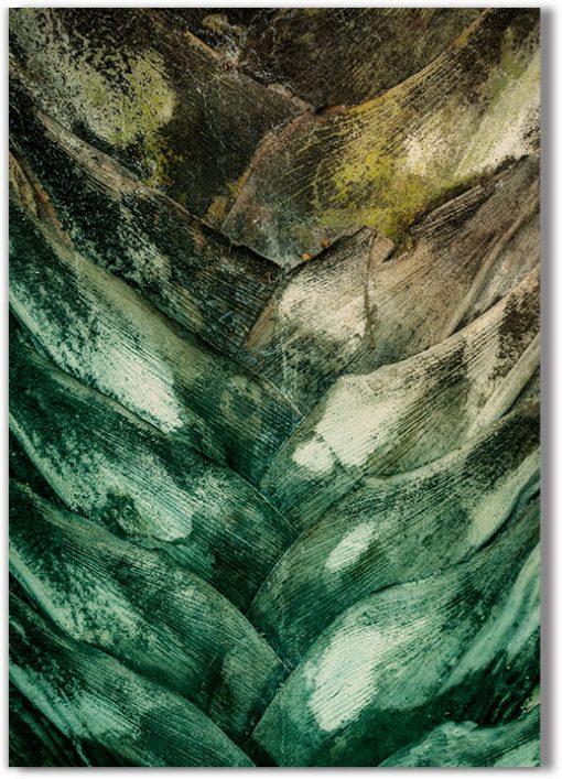 kora palmy - abstrakcja na obrazie
