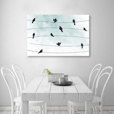 linki, na których siedzą ptaki