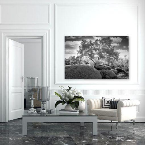 motyw drzewa w salonie - obraz