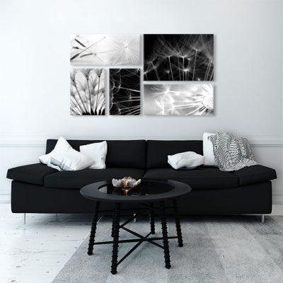 czarno-białe dmuchawce do salonu
