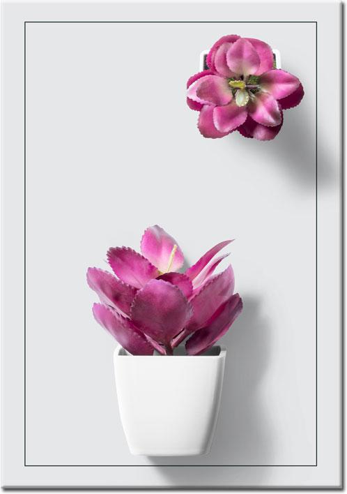 plakaty z botaniczne