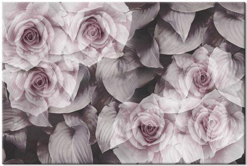obrazek kwiatów z ciemnym tłem