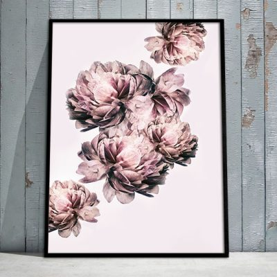 różowe plakaty