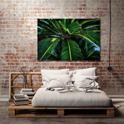tropikalny obraz z liśćmi