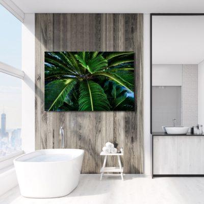 tropiki na obrazie