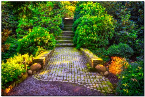 obraz kolorowy ze schodami