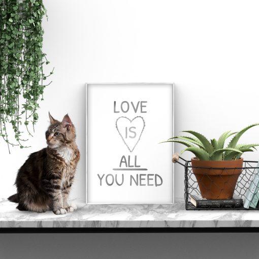 plakat srebrny o miłości