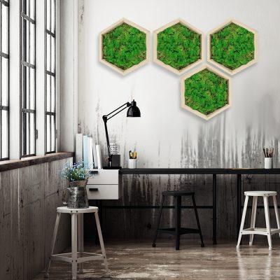 obraz heksagon mech na ścianę