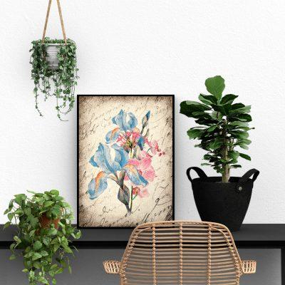 Plakat z kwiatem irysa i magnolii