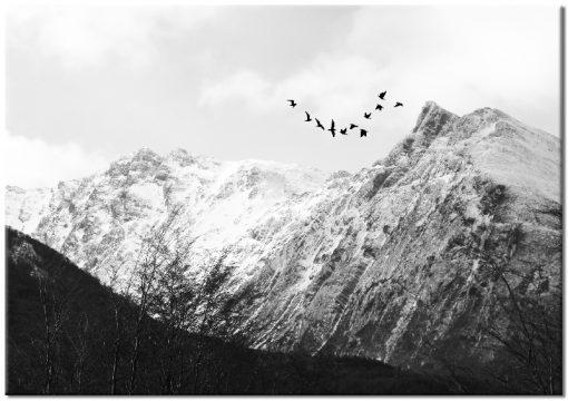 grafika ścienna góry