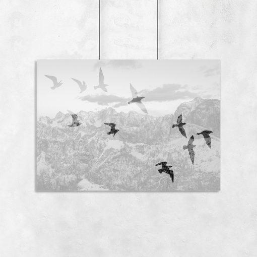 plakat z ptakami i górami