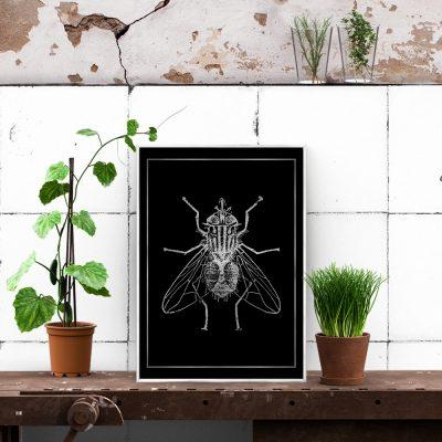 motyw owada na plakacie