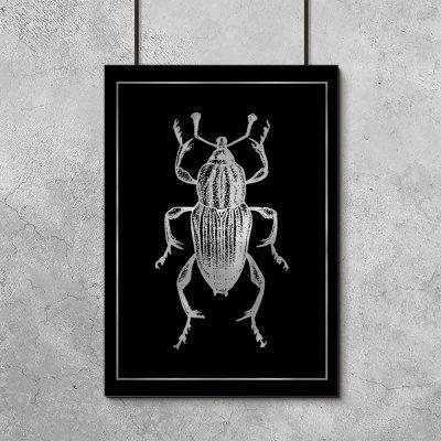 srebrny owad z chrabąszczem