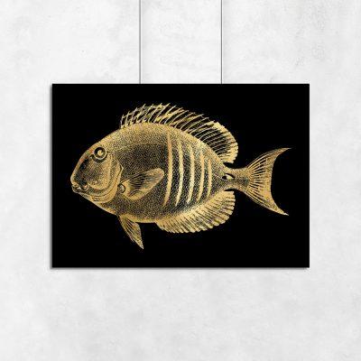 poziomy plakat z motywem rybki
