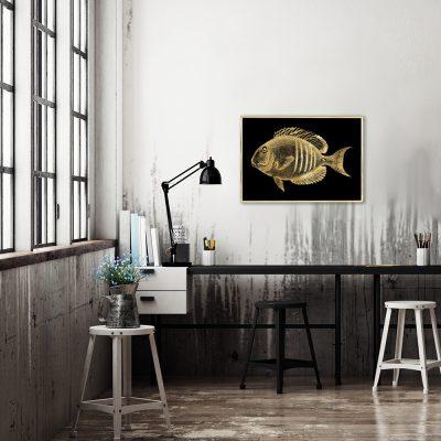 plakat z motywem złotej rybki