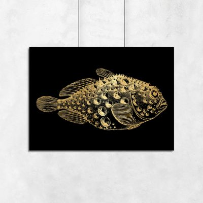 rybka na poziomym plakacie