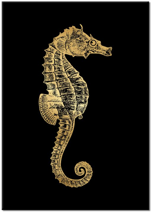 złoty konik morski na plakacie