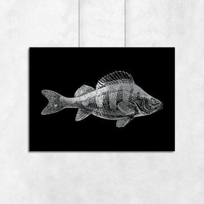 plakat srebrzony z rybą