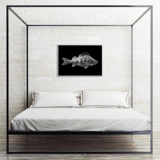 posrebrzana rybka na plakacie