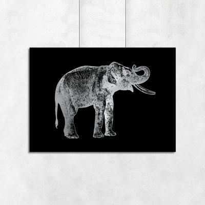 słonik na poziomym plakacie